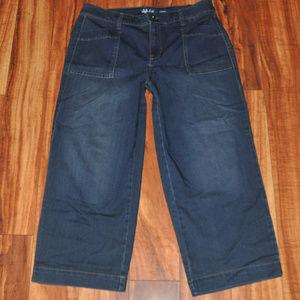 Bigger Butt Smaller Waist altered capri jeans 12